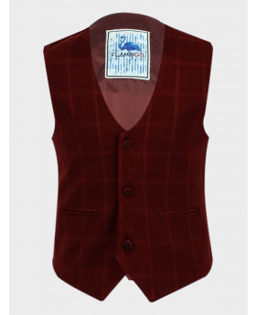 Boys Windowpane Check Slim Fit Cotton Single-Breasted Waistcoat in Burgundy front picture