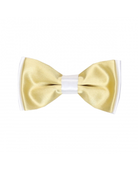 Boys Pre-tied Adjustable Neck Strap Kids Bowtie  In Gold and White
