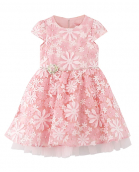 Girls Short Sleeves Puffy  Dress  Formal Set in Pink front picture