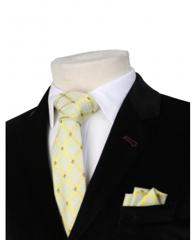 Boys Plaid Neckties Kids Formal Checkered Ties In Cream and Gold
