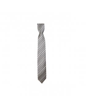 Boys Plaid Neckties Kids Formal Checkered Ties In Beige And Silver