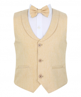 Baby Boy's Formal Single-breasted Waistcoat with collar and accessories in Gold Beige front picture