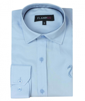 Boys Cotton Slim Fit Shirt in Sky Blue front picture