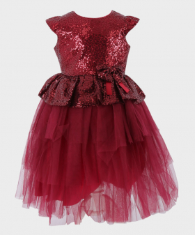 Flower Girls Sequin and Tulle Special Occasion Puffy Dress in Wine Red Front Picture
