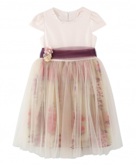Flower Girls Short Sleeves Party Dress in Blush Pink front picture