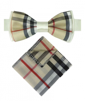 View from the bow tie and hanky of the Boys Bow Tie Burberry Check Style Beige with White Strap