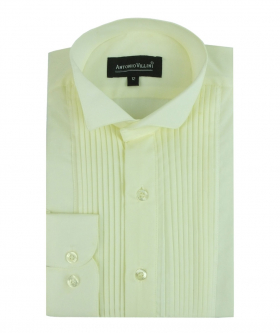 View of the Wing Collar Shirt Pleated in Cream Ivory