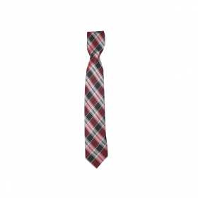 Boys Plaid Neckties Kids Formal Checkered Ties In Red and Grey